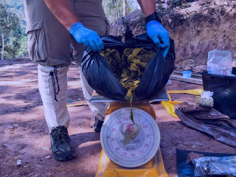 Los 7 kg de plástico extraídos del estómago de un ciervo en Tailandia