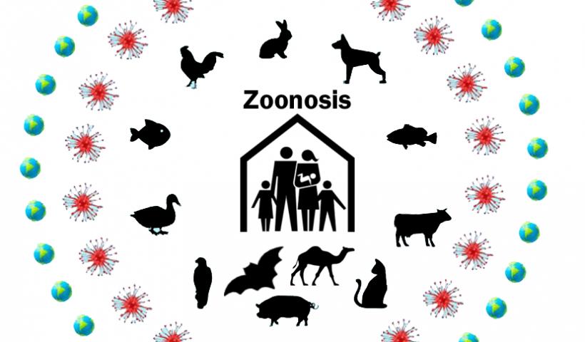 Los peligros de la profesión veterinaria
